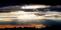 Wolken, Baum, Strahlen, Himmel