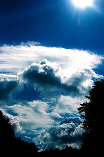 Pflanzen, Luft, Wolken, Warm