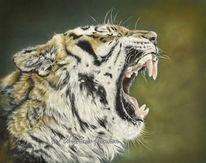 Tiger, Katze, Polychromos, Raubtier