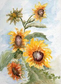 Sonnenblumen, Sommer, Aquarell, Pflanzen