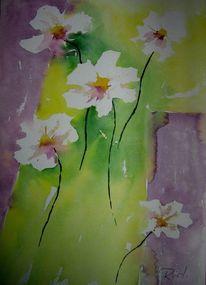 Blumen, Weiß, Aquarellmalerei, Weiße blumen