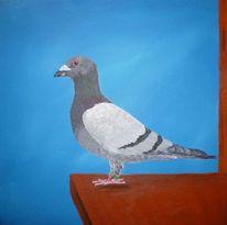 Taube, Acrylmalerei, Malerei