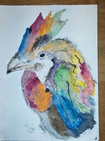 Bunt, Vogel, Hahn, Aquarell