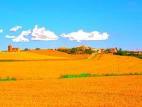 Fotografie, Abstrakt, Weizen