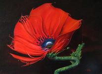 Rosa, Opium, Blumen, Natur