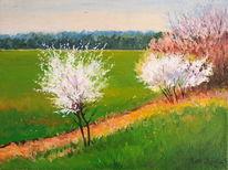 Feld, Baum, Blumen, Frühling