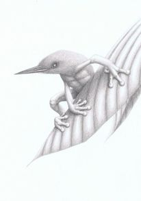 Tierzeichnung, Vogel, Irina wall, Mischwesen