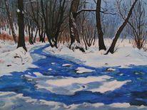 Wasser, Landschaft, Winter, Wald