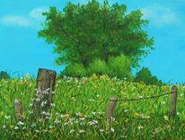 Wiese, Zaun, Sommer, Gras