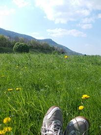 Denken, Berge, Sommer, Welt