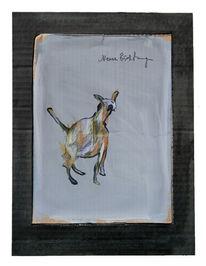 Hund, Züchtung, Zeichnungen