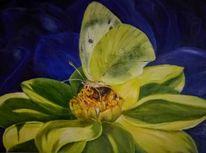 Dalie, Ölmalerei, Kohleweissling, Malerei