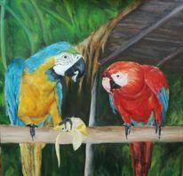 Papagei, Regenwald, Ölmalerei, Tiere