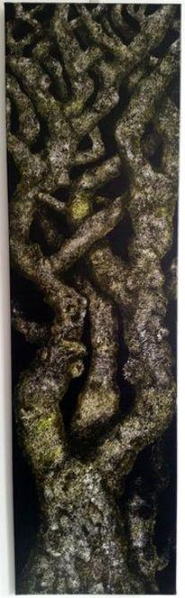Baum, Alter baum, Knorrig, Malerei
