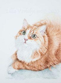 Tierportrait, Auftragszeichnung, Tuschmalerei, Katze