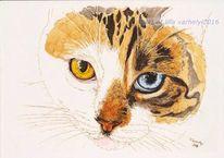 Augen, Katze, Tusche, Tiere