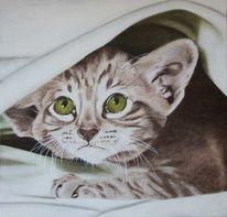 Tuschmalerei, Verspielen, Tiere, Ölmalerei