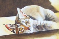 Ölmalerei, Sonne, Katze, Fenster