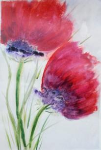 Di vora anneliese, Rot, Aquarellmalerei, Pflanzen