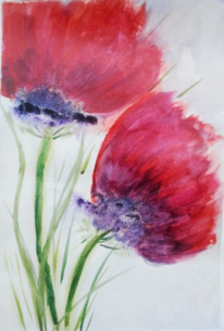 Aquarellmalerei, Pflanzen, Mohn, Divoart