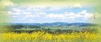 Hügel, Sommer, Wäldertourismus, Mühlviertel