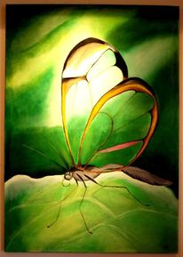 Libelle, Blätter, Insekten, Licht