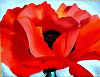 Sommer, Flora, Natur, Rot
