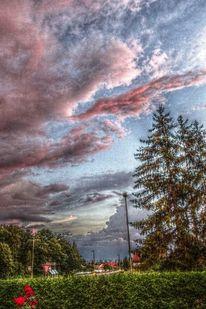 Hecke, Fichte, Haus, Wolken