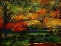 Textur, Natur, Landschaft, Bank