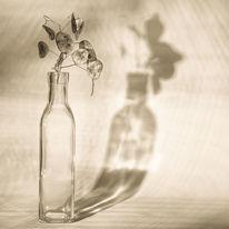 Schattenwurf, Stillleben, Schatten, Silberblatt