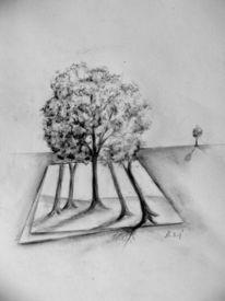 Baum, Bleistiftzeichnung, Zeichnungen,