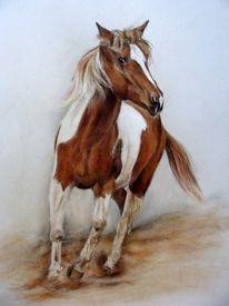 Pferdeportrait, Malerei