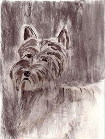 Terrier, Zeichnungen