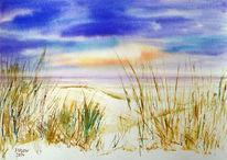 Ostsee, Dünen, Landschaft, Natur