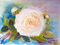 Aquarellmalerei, Natur, Rose, Blumenmalerei