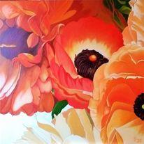 Blüte, Blumen, Rot, Mohn