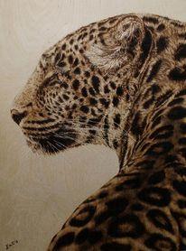 Tiere, Brandkunst, Leopard, Tierportrait