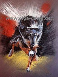 Barsoi, Russkaja psowaja borsaja, Hund, Hunderennen