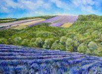 Lavendel, Blüte, Landschaft, Malerei