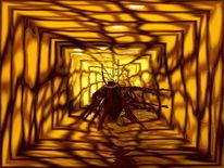 Kakerlaken, Netzzugang, Schaben, Blattus germanicus