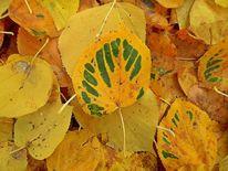 Verwelken, Laub, Herbst, Digitale kunst