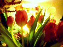 Outsider art, Digitale kunst, Tulpen