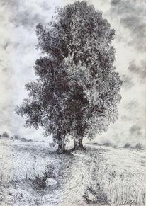 Landschaft, Kornfeld, Baum, Sommer