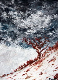 Winter, Wolken, Landschaft, Baum