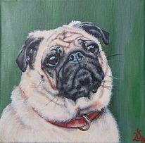 Mops, Hund, Portrait, Malerei