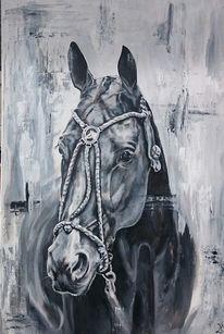 Pferde, Polo, Polosport, Pony
