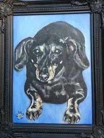 Hund, Dackel, Malerei, Auftrag