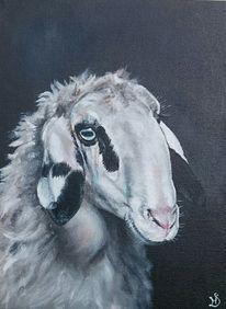Schaf, Brillenschaf, Malerei