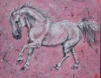 Pferde, Schimmel, Rosa, Malerei