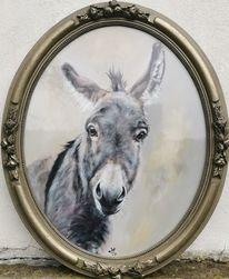 Esel, Portrait, Ovale, Malerei
